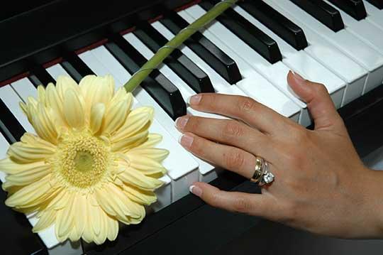 hands-flower